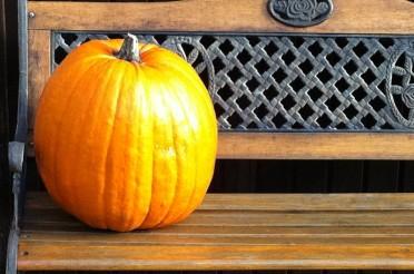 Der Herbst und seine schönen Farben