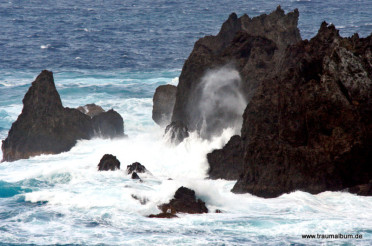 Aqua – Wasser des Lebens, Basis unseres Daseins