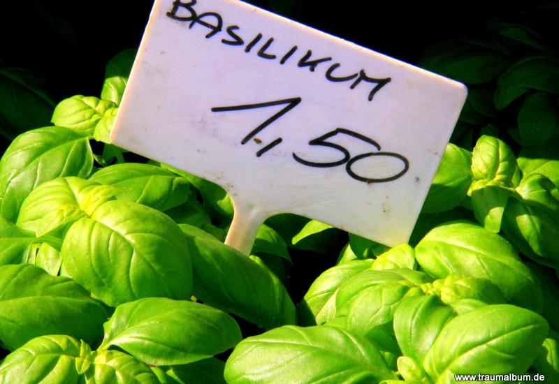 Basilikum: Es riecht nach Sommer und Italien - Olfaktorischer Farbrausch