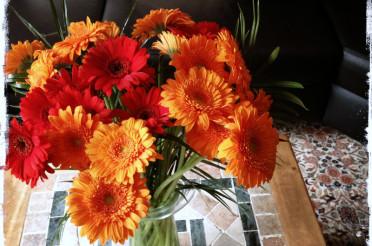 Gemütlich mit Blumen für die Aktion Blickwinkel