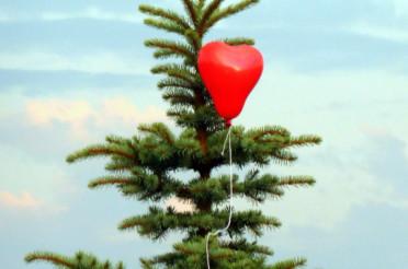 Hochzeitsballon für das Montagsherz #113