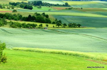 Felder und Weiden – Grüner Farbrausch für Alltäglichkeiten