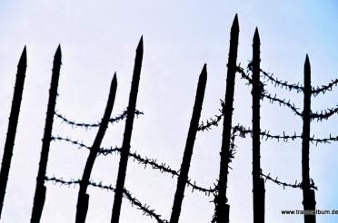 Die Befreiung Auschwitz jährt sich zum 70. Mal