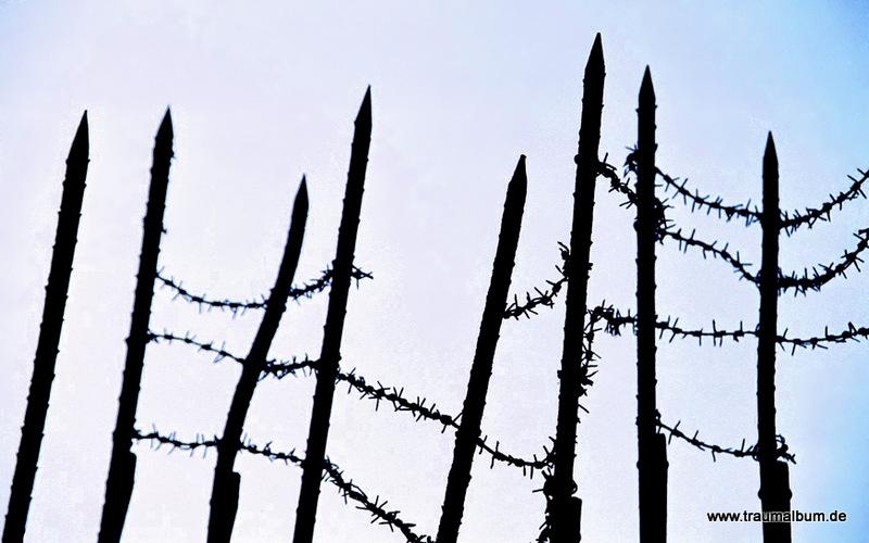 Befreiung Auschwitz