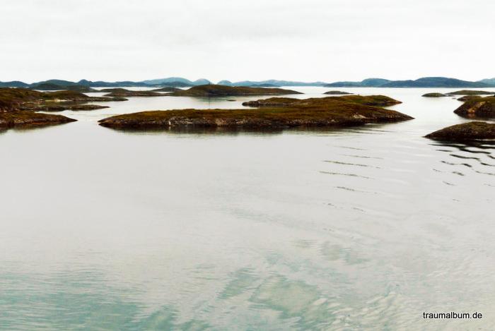 Am Polarkreis – Der Natur-Donnerstag DND #16