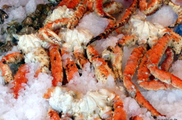 Meeresfrüchte auf Eis beim Kreativen Sonntagsrätsel #39
