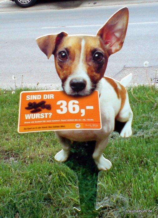 Haustiere und unsere Verantwortung für sie #PPP21