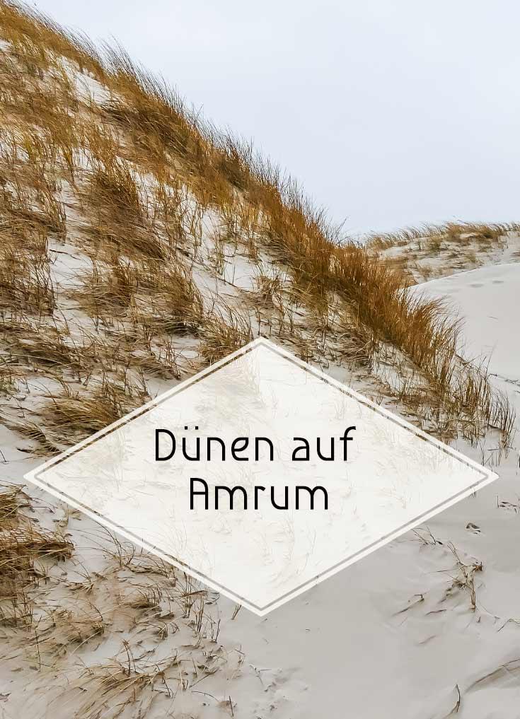 Die wunderschöne Dünenlandschaft von Amrum