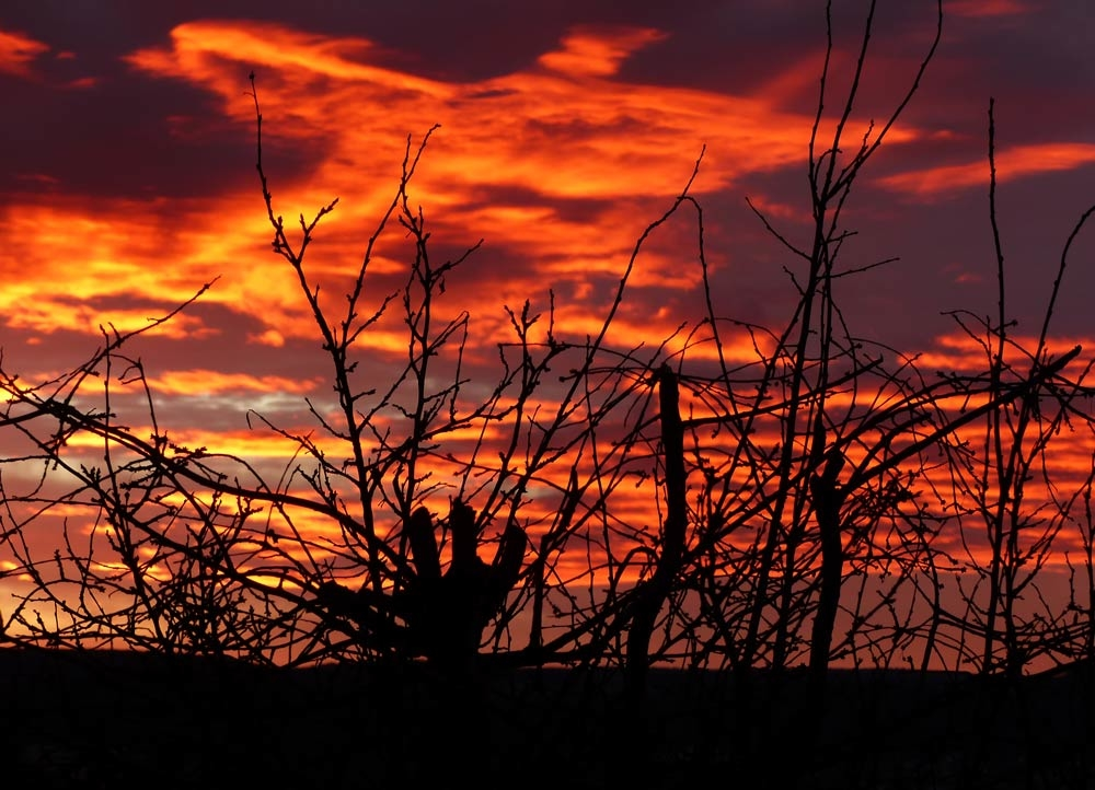 morgenrot abendrot himmel eye in the sky